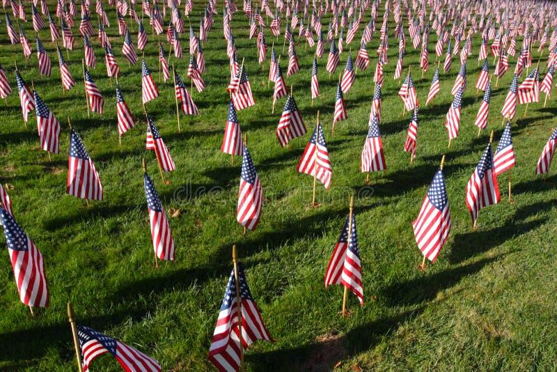 Image courante du champ des drapeaux américains photos stock