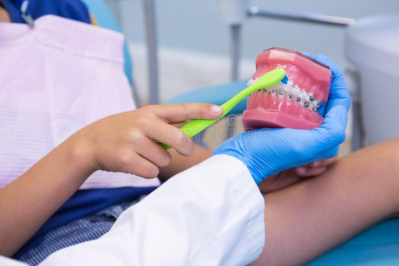 Image cultivée des dents de brossage de enseignement de garçon de dentiste sur des dentiers photos stock