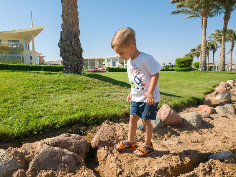 Photo of cute toddler boy walking at the sea with under growing palm trees and beautiful green lawn at hotel resort royalty free stock image