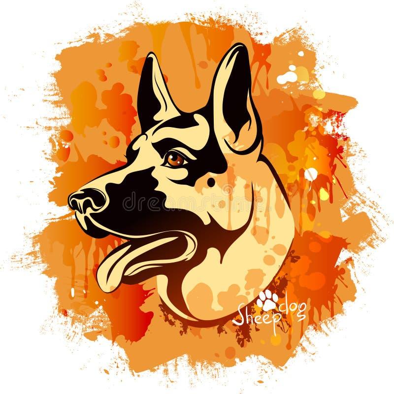 Image d'aquarelle de la tête d'un chien de la race de chien de berger illustration stock