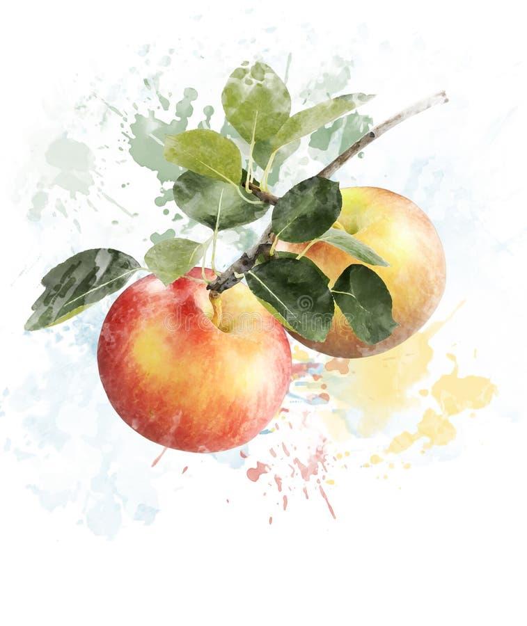Image d'aquarelle des pommes illustration stock
