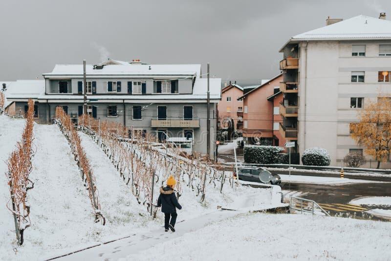 Image d'hiver de jeune garçon descendant la route dans des vignobles de Lavaux images stock