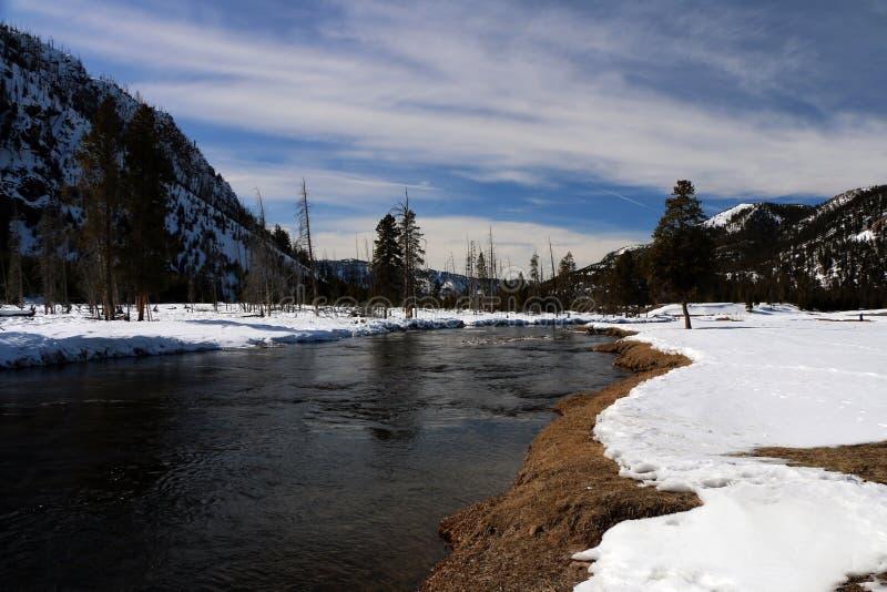 Image d'hiver en parc national de Yellowstone images libres de droits