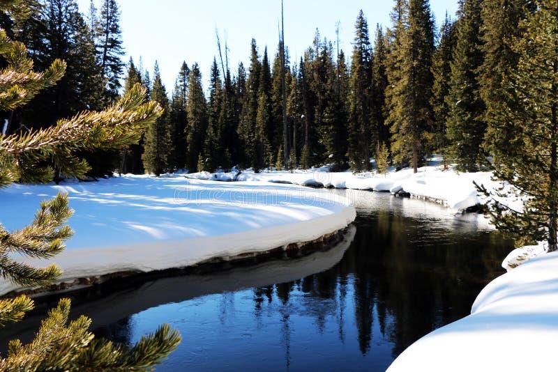 Image d'hiver en parc national de Yellowstone image stock