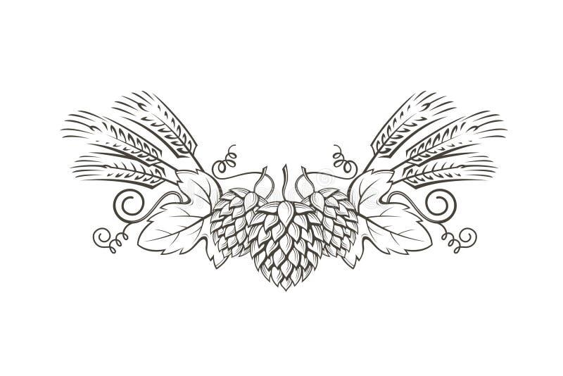 Image d'houblon et d'orge illustration stock