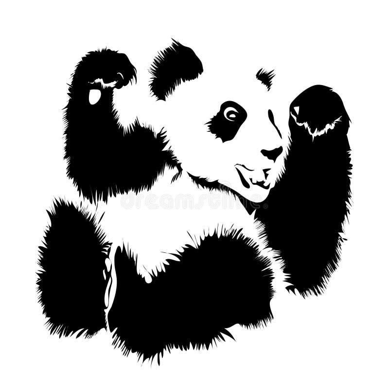 Image d'isolement par vecteur d'un panda illustration de vecteur