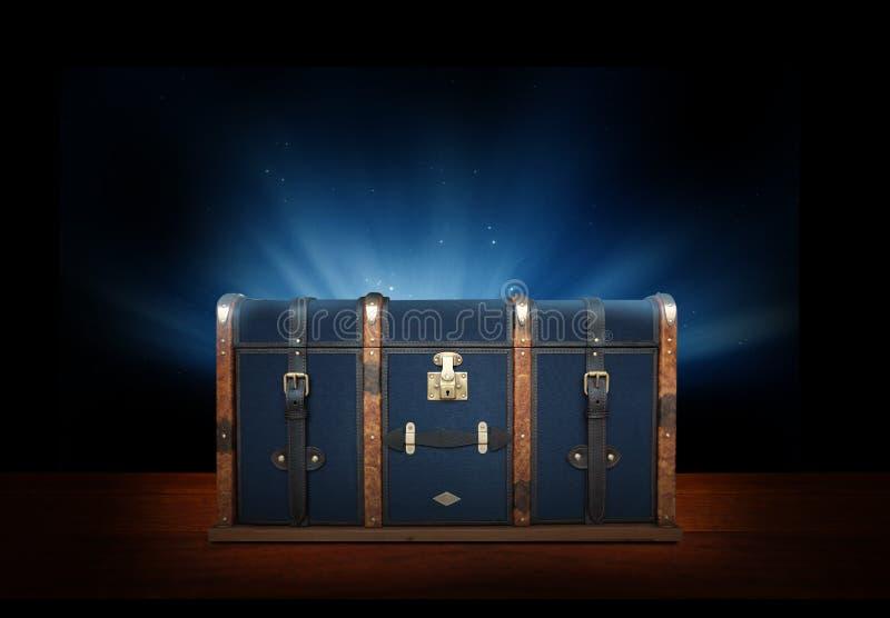 Image d'un coffre luxtury image stock