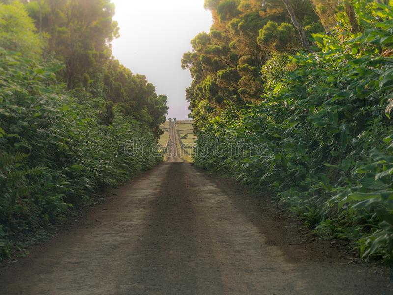 Image d'une voie à travers les champs menant à un point de disparaition au centre d'image image stock