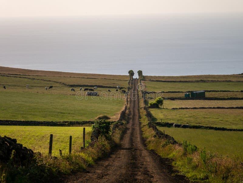 Image d'une voie à travers les champs menant à un point de disparaition au centre d'image photographie stock