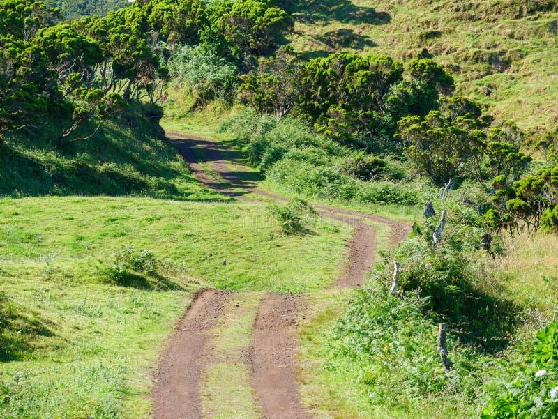 Image d'une voie à travers les champs menant à un point de disparaition au centre d'image photos stock