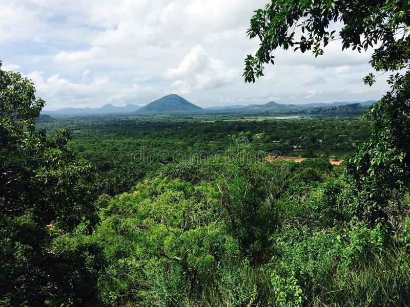 View of green beautiful nature in dambulla of srilanka stock photos
