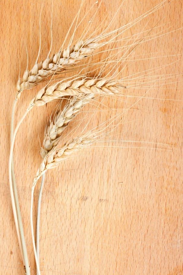 Image de blé sur la table photos stock