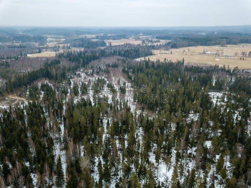 image de bourdon vue aérienne de zone rurale avec le chemin forestier dans le winte photographie stock libre de droits