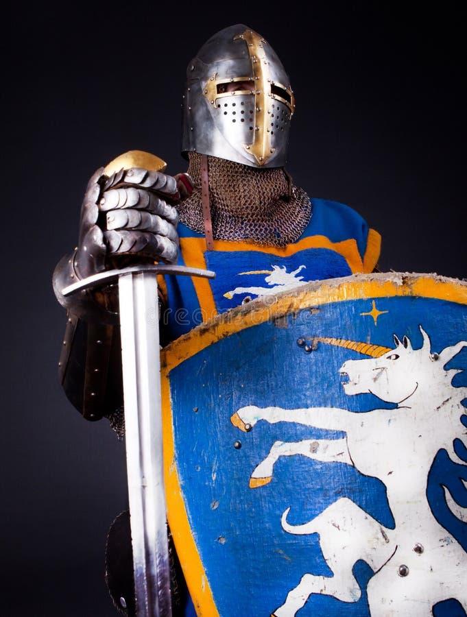 Image de chevalier confiant image libre de droits