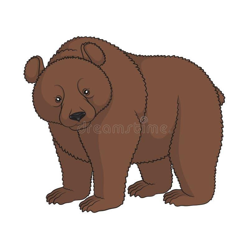 Image de couleur d 39 un ours brun objet d 39 isolement - Dessin d un ours ...