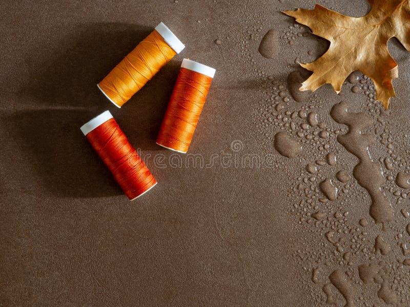 Image de couture avec des boulettes de fil et une feuille d'automne dans l'eau image libre de droits