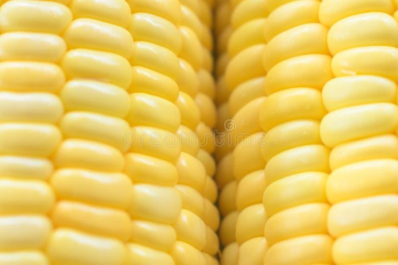 Image de fond jaune de maïs, aliment biologique sain, bio nutri photographie stock