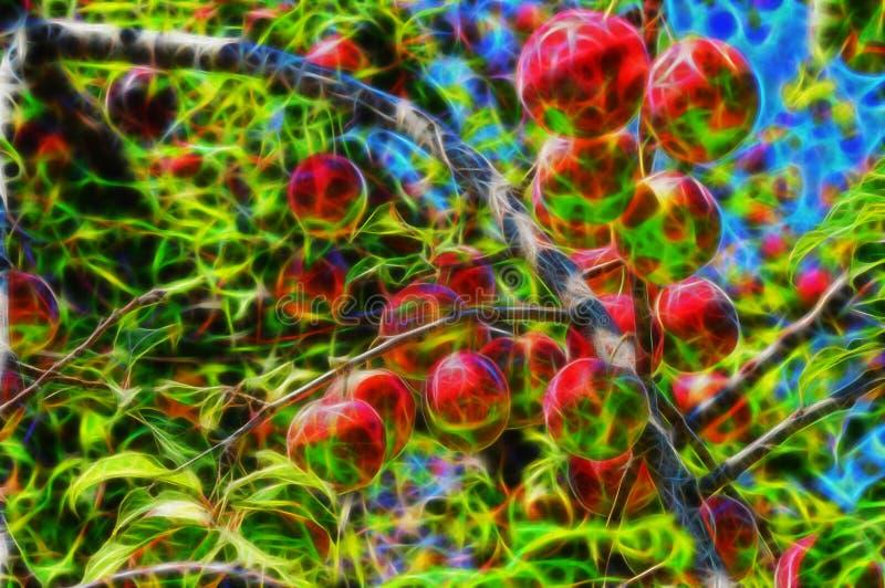 Image de fractale des cerise-prunes sur le prunier photo stock