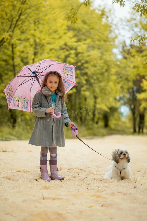 Image de la petite fille mignonne marchant avec le chien en parc photographie stock