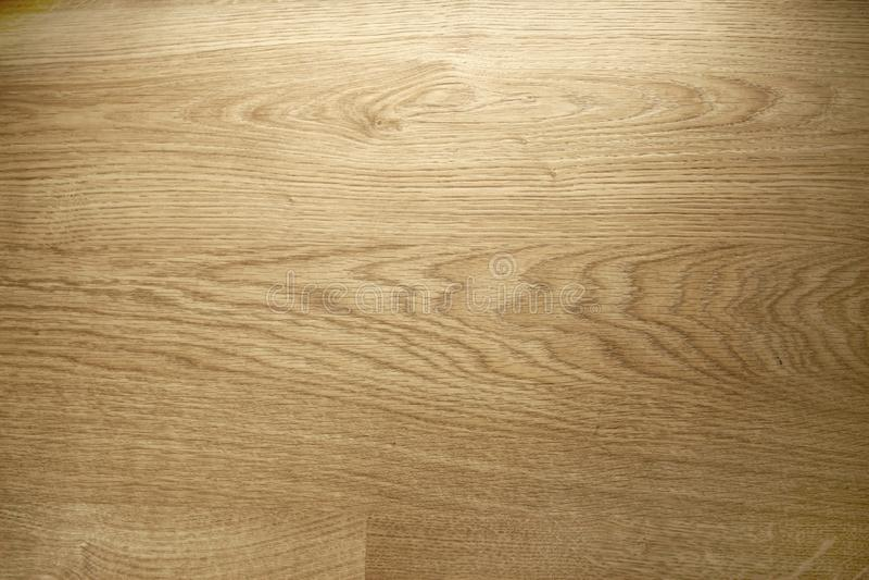 Image de la texture en bois Modèle en bois de fond photographie stock