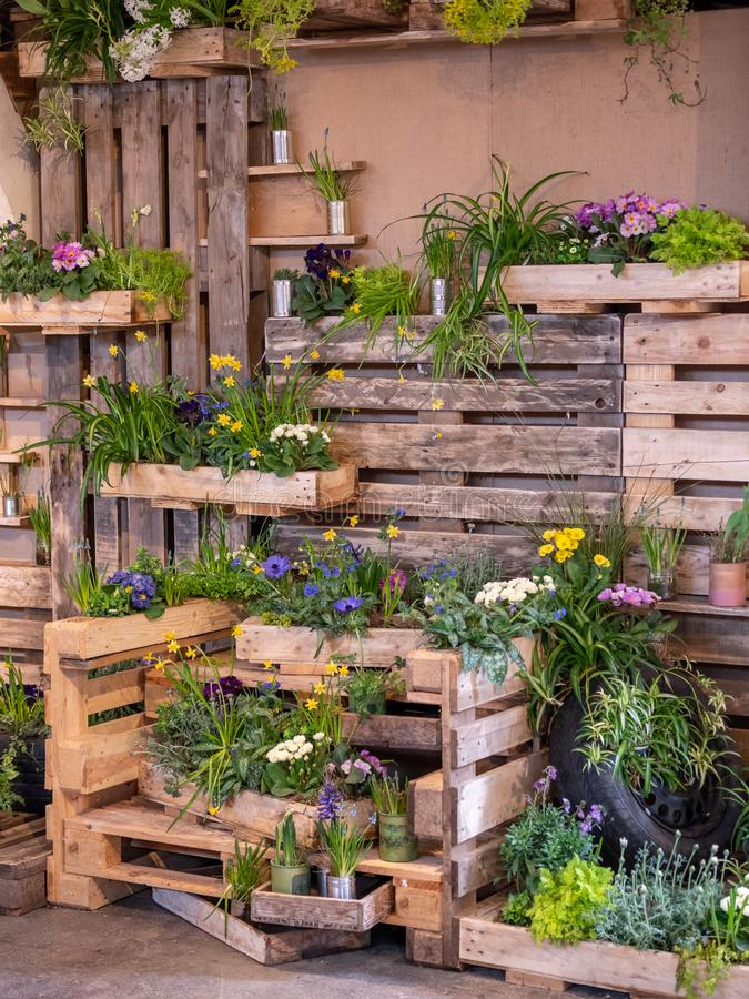 Image de mur en bois avec les boîtes en bois pleines de belles fleurs colorées décoration image stock