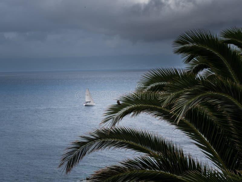 Image de palmier avec le bateau à voile trouble par le fond et le temps orageux images stock