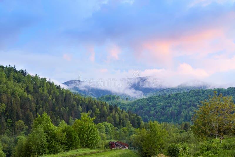 Image de paysage merveilleux de belle forêt verte sous le ciel bleu lumineux et les nuages blancs planants, montagne magnifique photographie stock