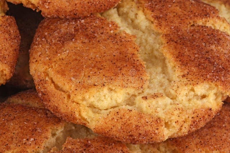 Image de plan rapproché d'un biscuit de snickerdoodle photos stock