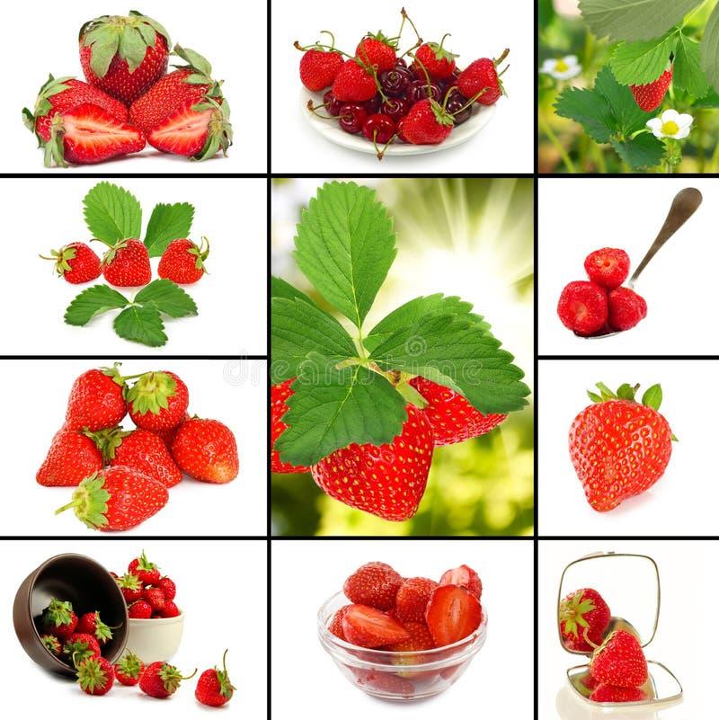 Image de plan rapproché de beaucoup de fraises images stock