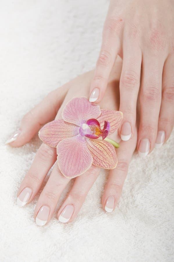 Image de plan rapproché de beaux clous et doigts de femme photographie stock libre de droits