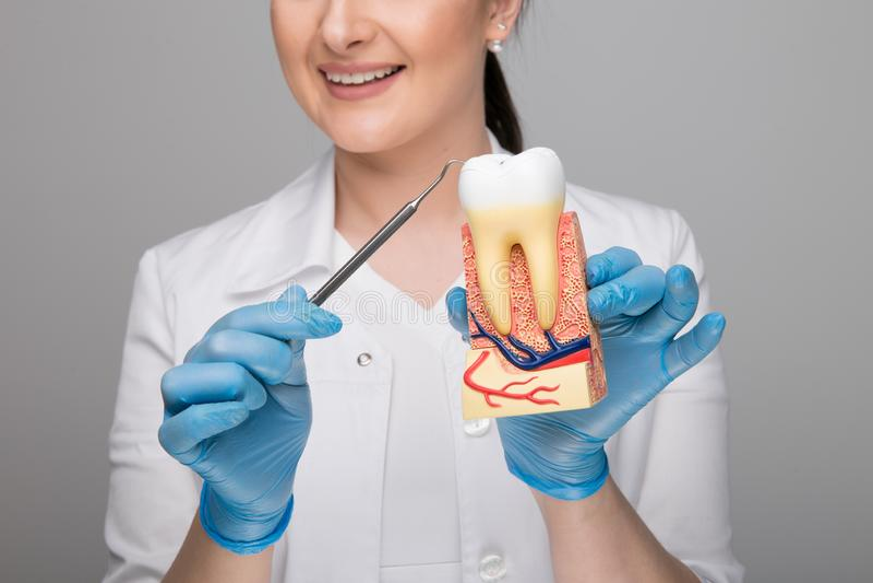 Image de plan rapproché de docteur de femme tenant une dent avec la carie et un outil photo libre de droits