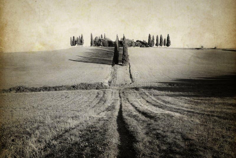 Image de style de vintage de la vallée des champs et des collines photographie stock