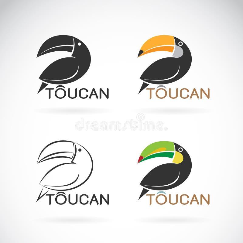 Image de vecteur d'une conception d'oiseau de toucan illustration stock
