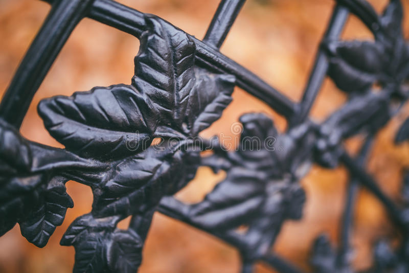 Image of a decorative cast iron fence and autumn orange leaves as background royalty free stock photos
