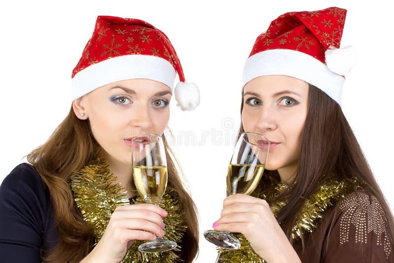 Image des femmes heureuses avec les verres photographie stock libre de droits