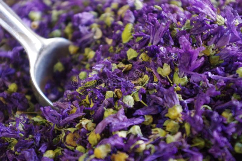 Image des fleurs sèches de mauve pour l'infusion Bien connu pour les avantages suivants : apaisement, apaiser, inflammatoire photographie stock libre de droits