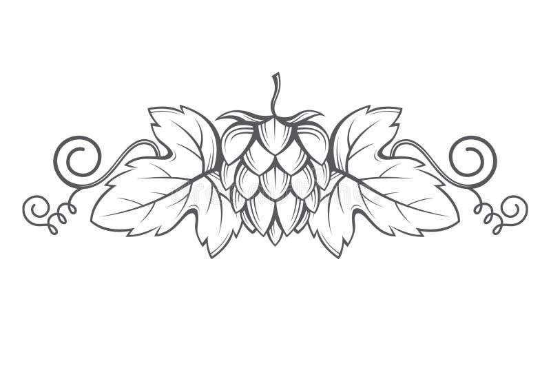 Image des houblon illustration de vecteur