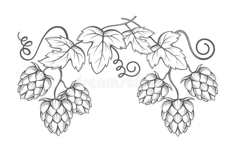 Image des houblon illustration stock