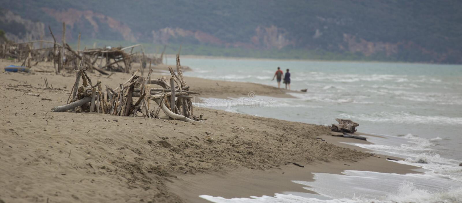 Image of a desolate beach with stacked wooden logs royalty free stock image