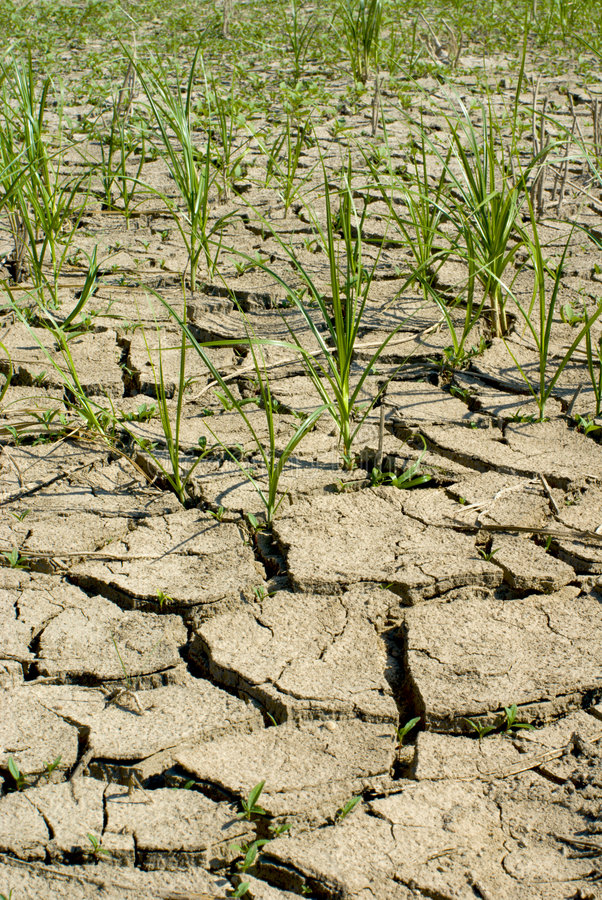 Download Image of dry earth stock photo. Image of incapacity, derk - 6756382