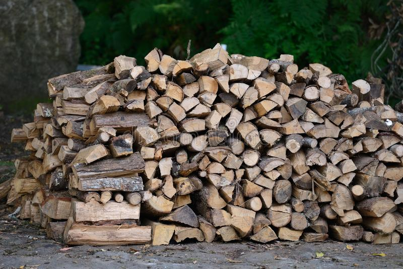 Dry wood stacked in piles royalty free stock image