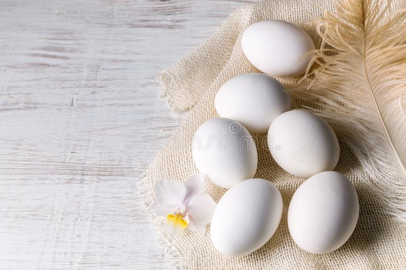 Image with eggs stock photos