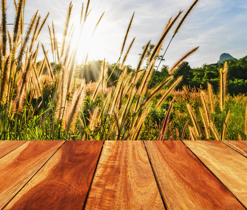Image of empty wood table with sunlight stock photo