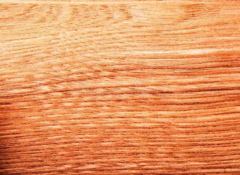 Image fine de fond en bois naturel de texture, cendre Niagara naturel photos stock