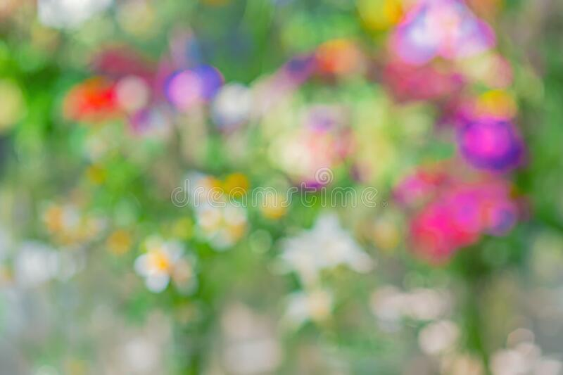 An image of a flower intended to be out of focus stock photos