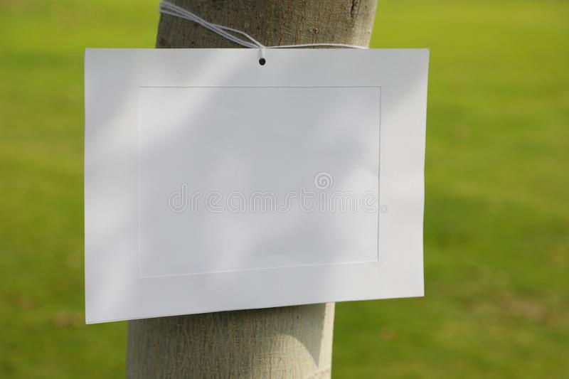 Image frame on a tree trunk stock photos