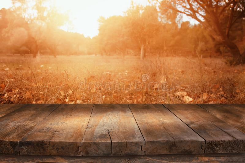 Image of front rustic wood boards and background of fall leaves in forest royalty free stock photography