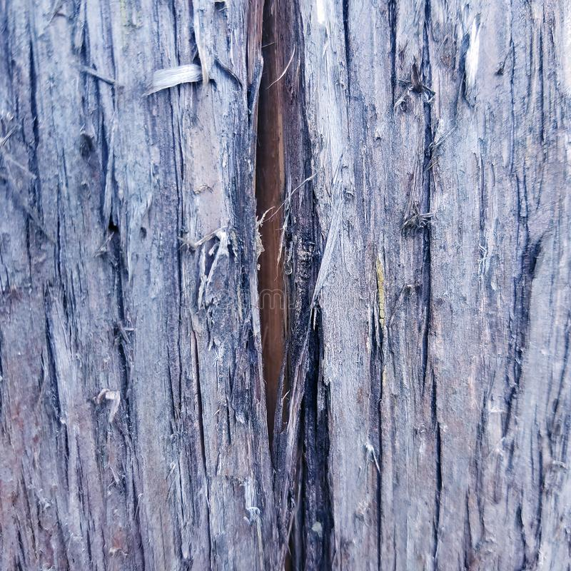 Aged grungy rustic wood background texture royalty free stock image