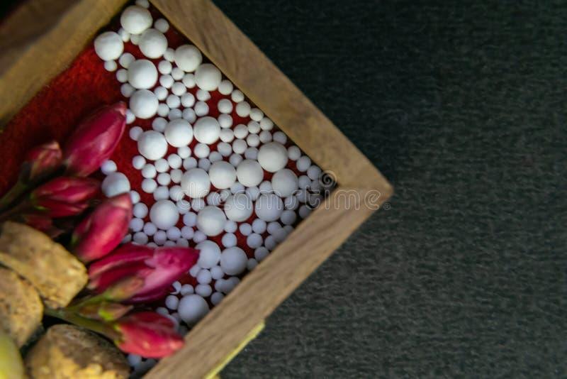 Image haute étroite des pilules homéopathiques avec les fleurs roses sauvages et du liège dans la boîte en bois sur le fond foncé image libre de droits