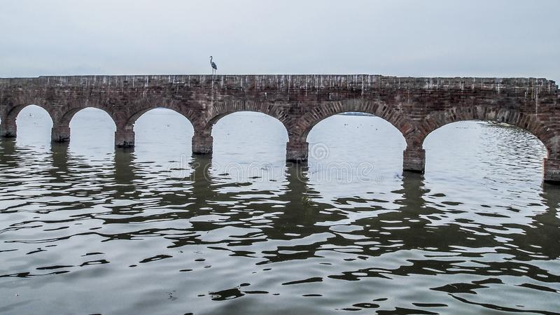 Image of a heron on aqueduct in ruins with arches in a river. Image of a heron in a ruined aqueduct with arches in a river with a gray sky in the state of stock photography